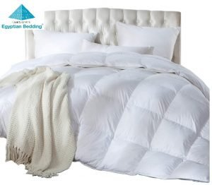 Best rated down comforter