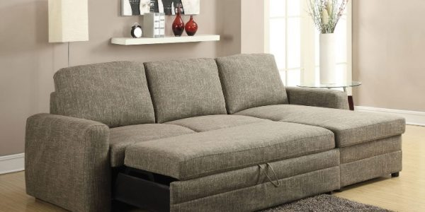 Derwyn Sofa with the hidden pull-out bed