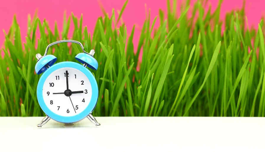 Humans operate according to a circadian rhythm