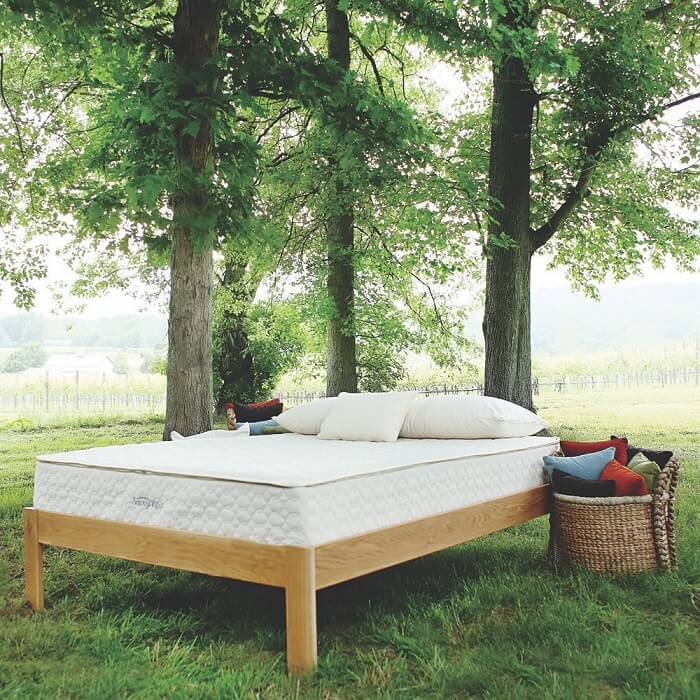 A latex mattress bed sitting outdoors in nature between trees